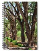 Cottonwood Desert Oasis - Utah Spiral Notebook