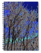 Cottonwood Line Up Spiral Notebook