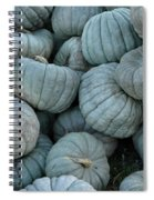 Counting Squash Spiral Notebook