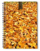 Country Color 17 Spiral Notebook