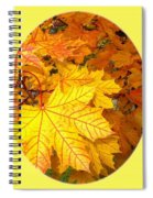 Country Color 18 Spiral Notebook
