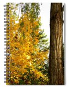 Country Color 19 Spiral Notebook