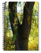 Country Color 20 Spiral Notebook