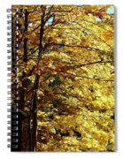 Country Color 22 Spiral Notebook
