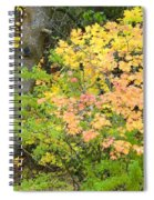 Country Color 23 Spiral Notebook