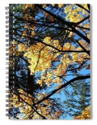Country Color 25 Spiral Notebook