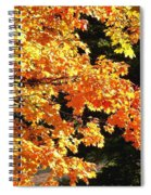 Country Color 26 Spiral Notebook