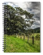 Countryside With Old Fig Tree Spiral Notebook
