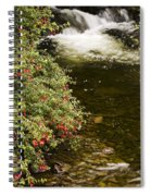 County Kerry, Ireland Fuchsia Bush Spiral Notebook