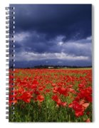 County Kildare, Ireland Poppy Field Spiral Notebook