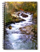 Courthouse River In The Fall Filtered Spiral Notebook