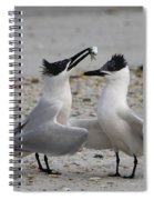 Courtship Spiral Notebook