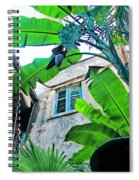 Courtyard Feelings Cafe Nola Spiral Notebook