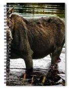 Cow Moose Spiral Notebook