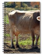 Cow Shadows Spiral Notebook