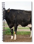 Cow With Johnes Disease Spiral Notebook