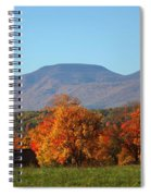 Coxsackie New York State Spiral Notebook