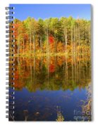 Coxsackie Reflection Spiral Notebook