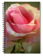 Coy Blush Spiral Notebook