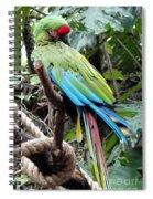 Coy Parrot Spiral Notebook