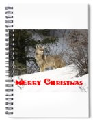 Coyote Christmas Spiral Notebook