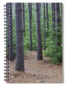 Cozy Conifer Forest Spiral Notebook