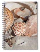 Crab Shell Spiral Notebook