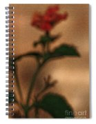 Cracked Flower Spiral Notebook