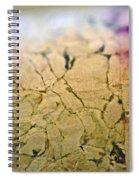 Cracks Spiral Notebook