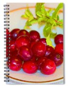 Cranberries And Mint Spiral Notebook