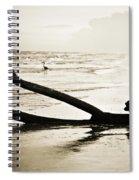 Crane At Sunset Spiral Notebook