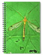 Crane Fly 7623 Spiral Notebook