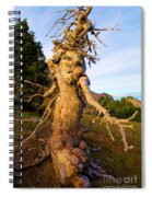 Crater Lake Kachina Spiral Notebook