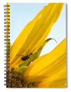 Crawling Along The Sunflower Spiral Notebook