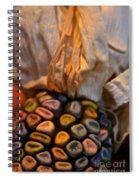 Crazee Corn Colors Spiral Notebook