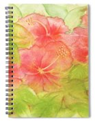 Creamsicle Hibiscus Spiral Notebook