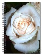 Creamy Rose Spiral Notebook