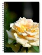 Creamy Sunlight Spiral Notebook