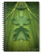 Creation 106 Spiral Notebook