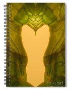 Creation 124 Spiral Notebook