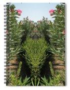 Creation 145 Spiral Notebook