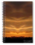 Creation 149 Spiral Notebook