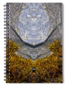 Creation 172 Spiral Notebook