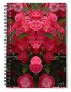 Creation 291 Spiral Notebook