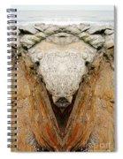 Creation 32 Spiral Notebook