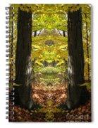 Creation 40 Spiral Notebook