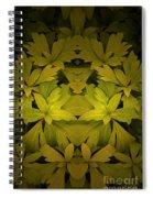 Creation 56 Spiral Notebook
