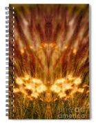Creation 58 Spiral Notebook