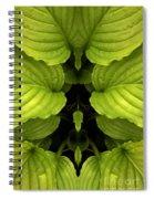 Creation 65 Spiral Notebook