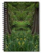 Creation 66 Spiral Notebook